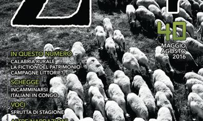 scelte-di-campo_copertina-zapruder-40